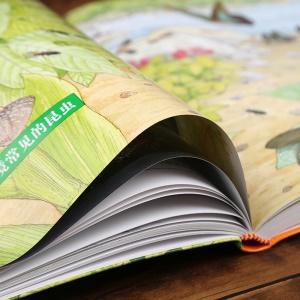 正版 自然野趣大觀察.昆蟲記昆蟲植物大全 動植物圖鑒百科全書 昆蟲世界 兒童文學故事書 少兒科普讀物 昆蟲記