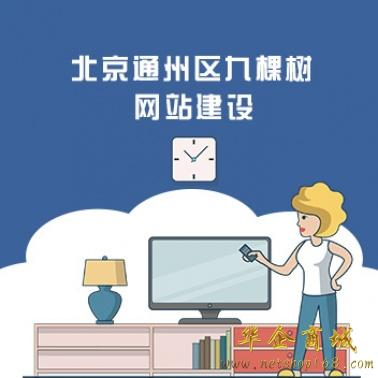 北京通州区九棵树网站建设/推广公司