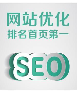 百度排名首页 seo关键词优化 百度推广 网站优化 seo快照服务