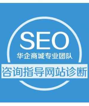 SEO顾问服务 SEO咨询 指导 网站seo诊断 分析 解答 seo优化顾问