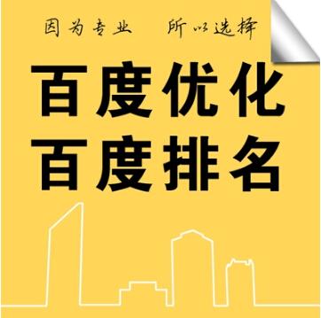 百度谷歌优化排名首页网站推广服务网络关键词seo快照页前三