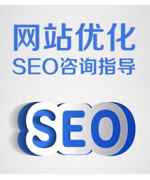 网站SEO咨询 SEO顾问 SEO诊断 网站营销策划推广顾问 SEO咨询指导