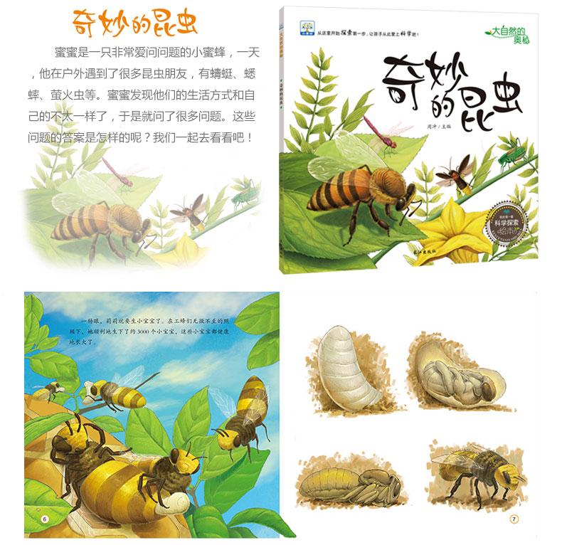 大自然的奥秘 奇妙的昆虫+神奇的植物+小水滴历险记+石头的故事+风是怎样形成的全五册 童话故事全彩图大字